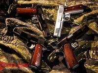 handguns-3_0
